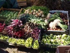 Légumes de Benoît Deloffre