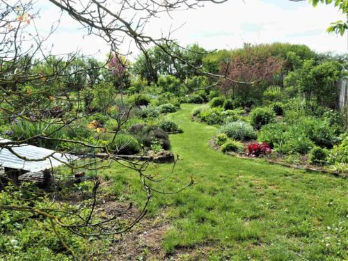 Le jardin de Béatrice