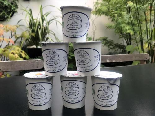 Les yaourts et leur pot recyclable